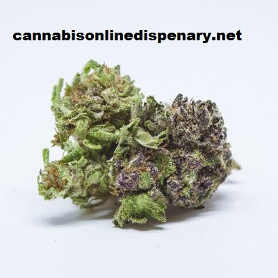 Grape Ape Marijuana Strain