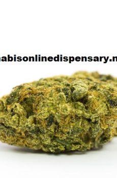 Super Lemon Haze Marijuana Strain