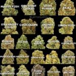 best cannabis strains online