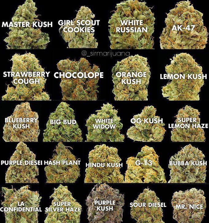 best cannabis strain, online dispensary