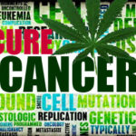 cure-cancer-cannabis online dispensary
