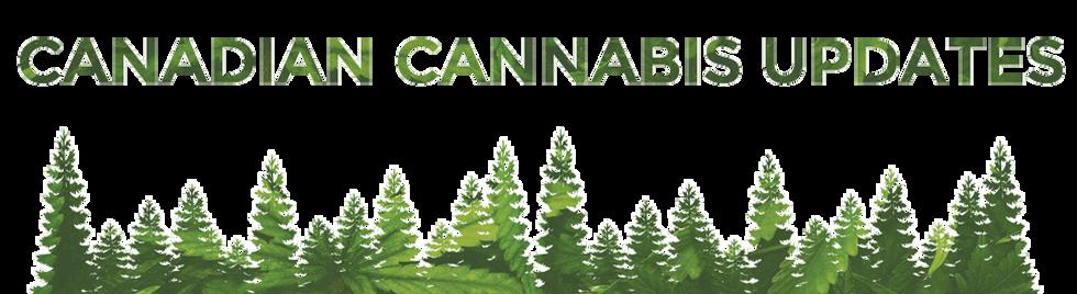 cannabis updates,
