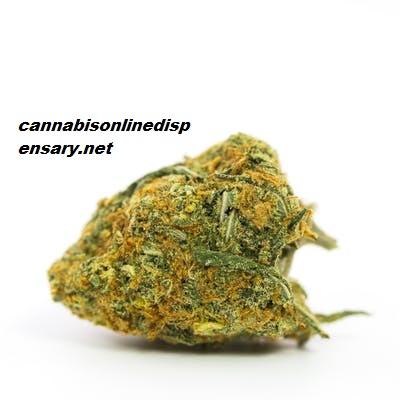 Lemon Kush Marijuana Strain