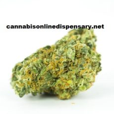 Gorilla Glue #4 Marijuana Strain, buy weed online, online dispensary shipping worldwide, buy marijuana online