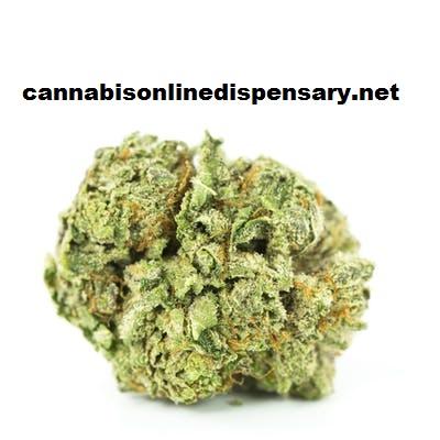Granddaddy Purple Marijuana Strain