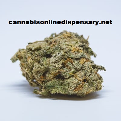 Shiva Skunk Marijuana Strain