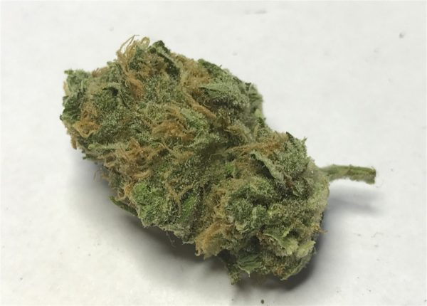 Lemon G, Lemon G Marijuana Strain