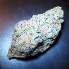 Purple Haze, Purple Haze Marijuana Strain