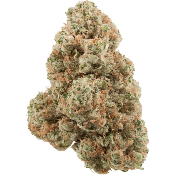 White Cookies Marijuana Strain