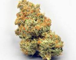 dispensary shipping worldwide, buy marijuana online, buy skunk online uk